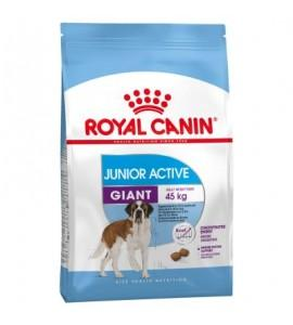 Корм ROYAL CANIN Giant Junior Active 15 кг (д/собак гигантских пород от 8 до 18/24 мес.)